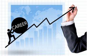 career after diploma