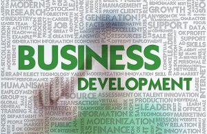 Business Developer Executive