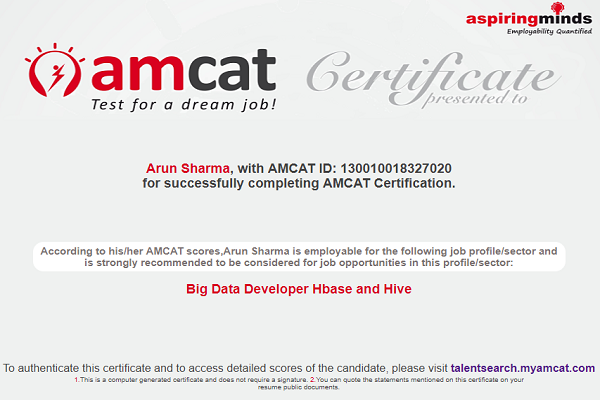 AMCAT Big Data Developer certificate.