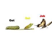 job tips