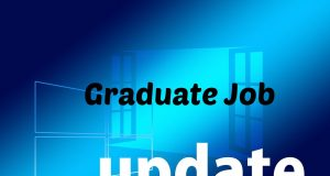 graduate job updates for freshers