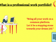 Types of a professional portfolio