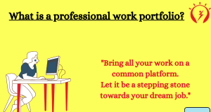 Types of a professional portfolio
